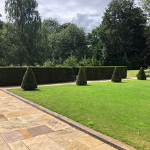 Mark Finch Garden & Grounds Maintenance - Gardeners - Slough - Berkshire