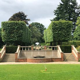 Mark Finch Garden & Grounds Maintenance - Gardeners - Slough